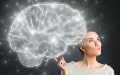 Cerveau femme