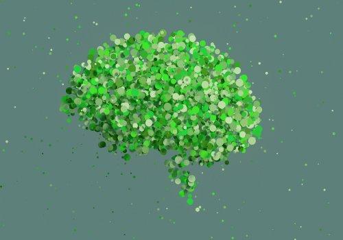 Neuro-vente & Neuro-management